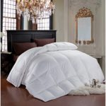 Cheer Collection Luxury All Season White Goose Down Alternative Comforter (Full-Queen)